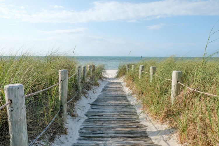 Boardwalk going to the beach